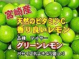 宮崎県 グリーンレモン マイヤー A品 M玉 およそ45個 およそ5kg入り