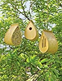Mason Bee House Bamboo Birdhouse and Bamboo Butterfly House Set of 3