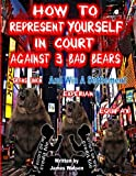 How to Represent yourself in Court Against 3 Bad Bears And win A Settlement: Win A Settlement Against Trans Union, Experian, Equifax