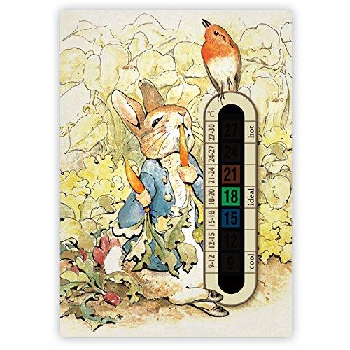 Termometro Peter Rabbit per asilo e stanza del bebè