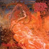 Blessed Are the Sick by Morbid Angel (2009-11-23)