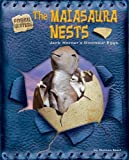 img - for The Maiasaura Nests: Jack Horner's Dinosaur Eggs (Fossil Hunters) book / textbook / text book