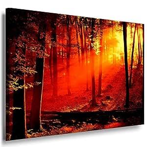 Sonnenuntergang wald bild 100x70cm - Wandbilder amazon ...