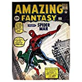 Stan Lee Signed Marvel Comics Retro: Amazing Spider Man 24x36 Poster (Signed in Silver)