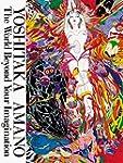 Yoshitaka Amano : the world beyond yo...