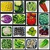 Heirloom Vegetable Seeds Non Hybrid Survival Seed Kit, High Protein Kit ,Heirloom NO GMO Vegetable…