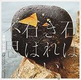 石はきれい、石は不思議—津軽・石の旅 (INAX BOOKLET)