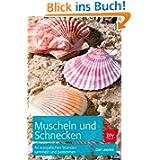 Muscheln und Schnecken: An europäischen Stränden sammeln und bestimmen