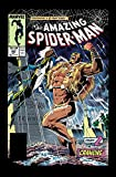 img - for Amazing Spider-Man Epic Collection: Kraven's Last Hunt book / textbook / text book