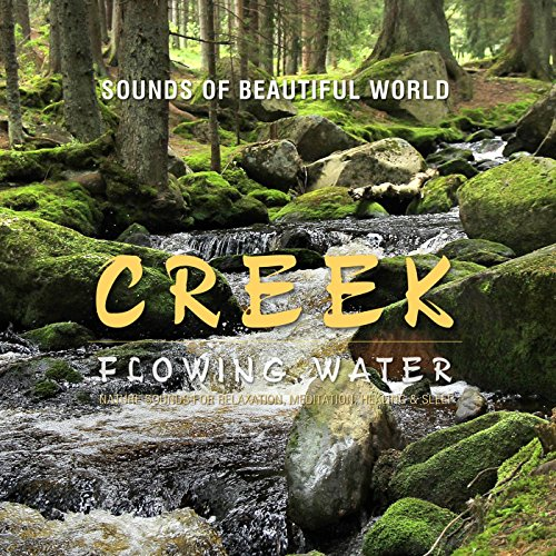 Flowing Water: Creek (Nature Sounds for Relaxation, Meditation, Healing & Sleep) (New World Music compare prices)