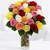 24 Vibrant Birthday Roses - Flowers