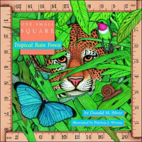 Tropical Rain Forest (One Small Square)