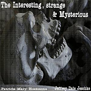 The Interesting, Strange & Mysterious Audiobook