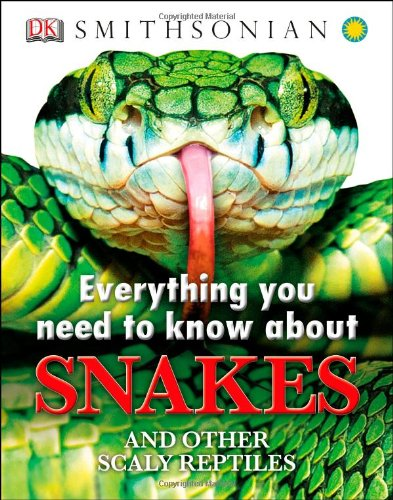 everything-you-need-to-know-about-snakes-everything-you-need-know