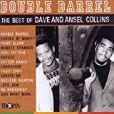 Double Barrel: The Best Of Dave And Ansel Collinsby Dave Collins