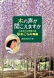 木の声が聞こえますか (イワサキ・ノンフィクション 17) (ノンフィクション・生きるチカラ)