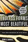 Image of Endless Forms Most Beautiful: The New Science of Evo Devo