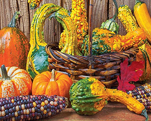 "Springbok ""Harvest Colors"" Jigsaw Puzzle (1500-Piece)"
