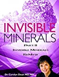 Invisible Minerals Part II - Multiple Minerals ReMyte (English Edition)