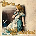Alice im Wunderland Audiobook by Lewis Carroll Narrated by Caroline Kiesewetter