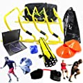 New Speed and Agility Training Kit with Free Carry Bag and DVD | Agility Hurdles, Cones, Speed Ladder, Reaction Ball, Lateral Resistor | Football, Soccer, Basketball, Volleyball, Rugby, Hockey, MMA