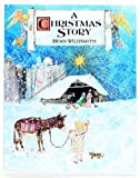 A Christmas Story (0192798723) by Wildsmith, Brian