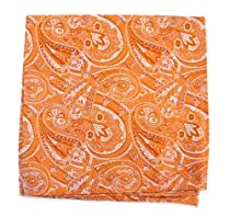 100% Silk Woven Pumpkin Orange 21st Century Paisley Pocket Square