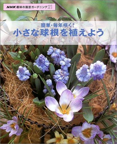 簡単・毎年咲く!小さな球根を植えよう