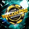 Wildness Riddim: Trinidad and Tobago Carnival Soca 2014