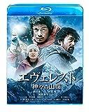 エヴェレスト 神々の山嶺 通常版 [Blu-ray] -