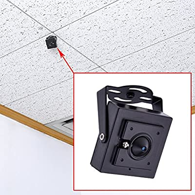 Neewer 10 IR LED 2.8mm Pinhole 600TVL CMOS Micro CCTV Surveillance Monitoring Camera PAL SV-H03-Ideal for Home Shop Warehouse Office(Black)