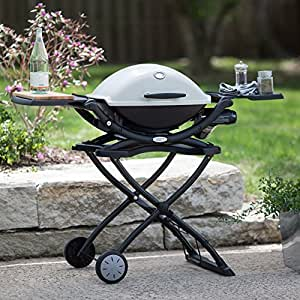 weber q 2200 propane grill patio lawn garden. Black Bedroom Furniture Sets. Home Design Ideas