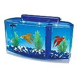 Penn Plax Deluxe Triple Betta Bow Aquarium Tank, 0.7-Gallon