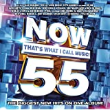 Now That's What I Call Music Vol.55 / Var