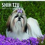 Shih Tzu 2017 - 18-Monatskalender mit...