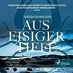 Aus eisiger Tiefe: Der dritte Fall für Ingrid Nyström und Stina Forss | Roman Voosen,Kerstin Signe Danielsson