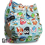 LittleBloom, Reusable Pocket Cloth Nappy, Fastener: Popper, Set of 1, Pattern 67, With 2 Microfibre Inserts, Owls In Blue