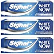 Signal dentifrice White Now 75 ml - Lot de 3