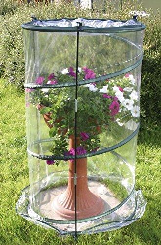 Verdemax 2634Serra pop-up, Anthurium 70x 100cm