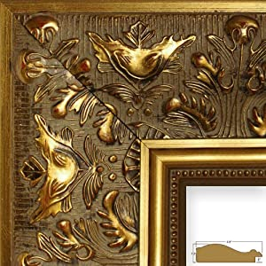 Amazon.com - Craig Frames 9472 24 by 36-Inch Picture Frame, Ornate