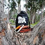 Tree-Swing-Hanging-Strap-Heavy-Duty-Water-Resistant-Polyester-Strap-Carabiner-5ft-Long-2-Thick-1200lb-Weight-Capacity-Weather-Resistant-Weather-Proof-Infographic-Instructions