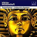 Tutanchamun - Umbruch in Ägypten - Bild der Wissenschaft | Michael Zick