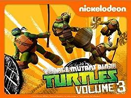 Teenage Mutant Ninja Turtles Volume 3 [HD]