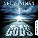 American Gods Audiobook by Neil Gaiman Narrated by Stefan Kaminski
