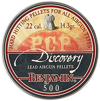 Benjamin .22 Caliber Hollow Point Pellets (500-Count)