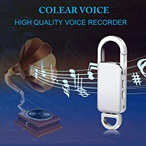 Voice Recorder, SNAHIKE 16GB USB Audio Voice Recorder, Rechargeable Metal Casing Digital Voice Recorder (Color: Silver)