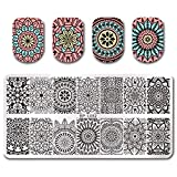 Summer Fruit Nail Art Stamping Template Tropical Punch Pattern Rectangle Image Plate Stamping Polish Needed BP-L052 (Color: BP-L052)