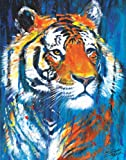 Stephen Fishwick Nale Exotic Tiger Fine Decorative Animal Art Postcard Poster Print 11x14