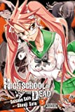 Daisuke Sato Highschool Of The Dead, Vol 3