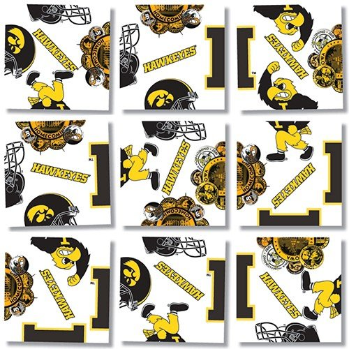 b. dazzle University of Iowa Hawkeyes Scramble Squares Puzzle - 1